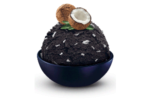 SCHÖLLER 5.0L, Black coconut